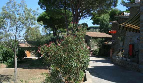 Clary Holiday Village Isola del Giglio - Apartments Isola del Giglio ...